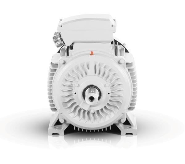 elektromotor vybo electric